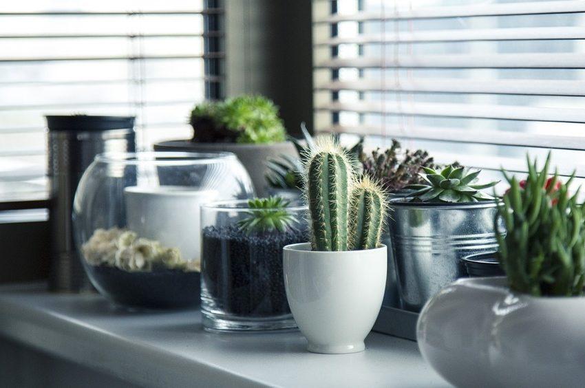 casa eco-friendly consigli